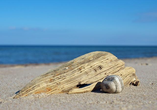 beach-742771_640