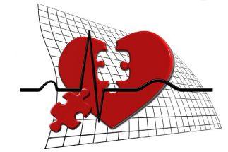 Organspende – ja oder nein?